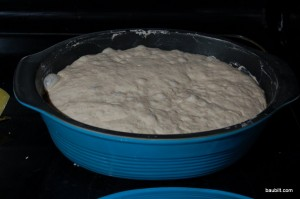 Close-up dough after rising